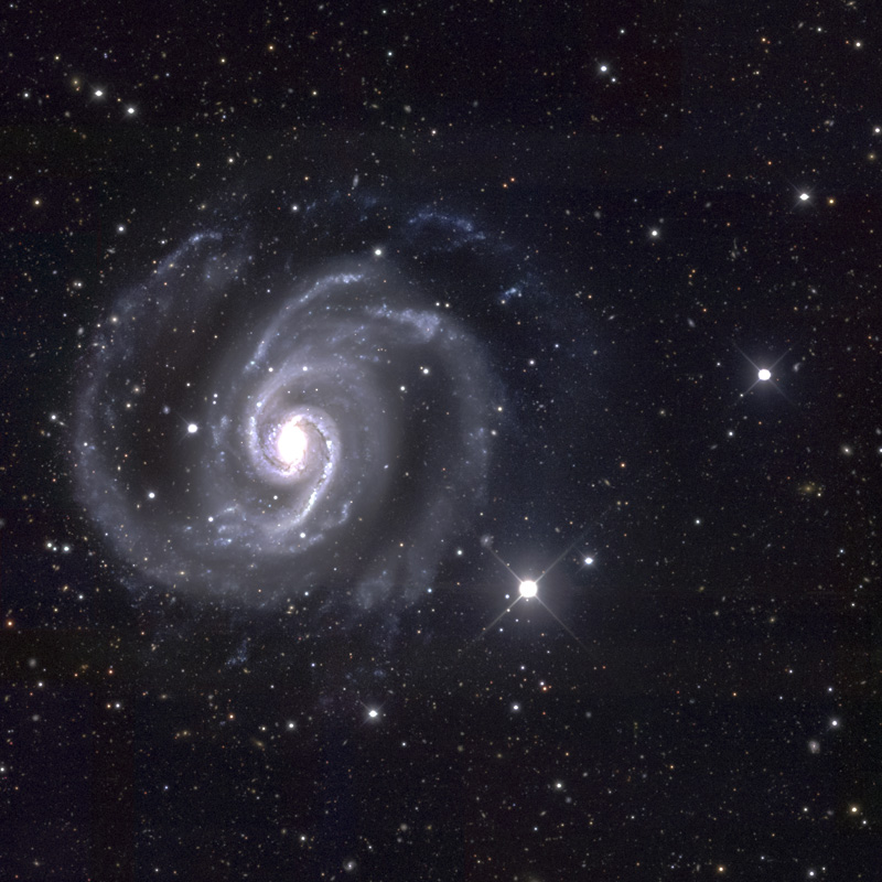 NGC 1566 by DES